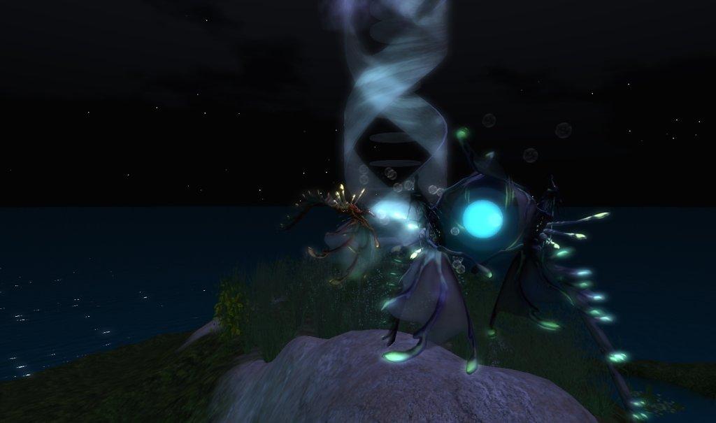 Seadrykes by Night